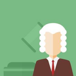 noções de direito constitucional