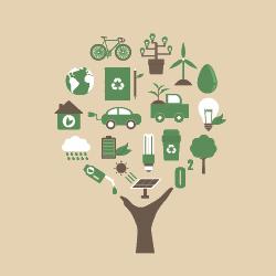 cursos online em meio ambiente