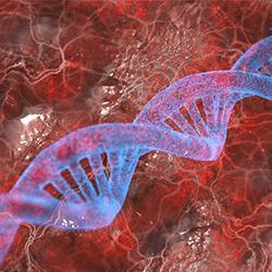 DNA e a biotecnologia
