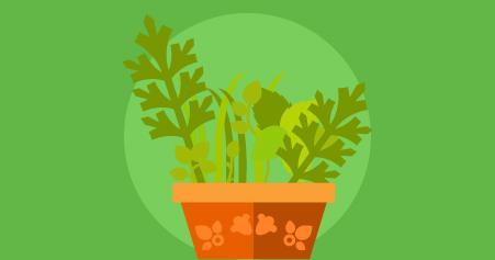 plantas anti-inflamatórias
