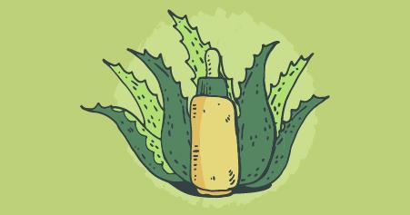 plantas medicinais e suas funções