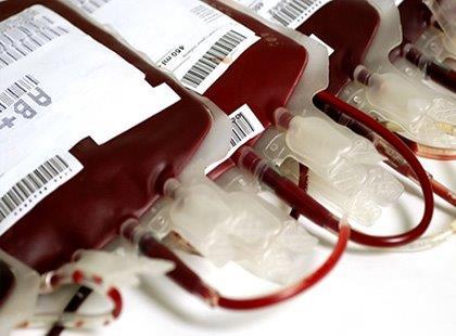 Qualidade e Eficiência na Coleta de Sangue - Noções Gerais